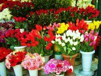 Çiçekçiler de Eylem Hazırlığında