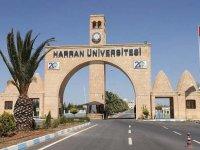 Harran Üniversitesi'nde akademisyenlerden toplu istifa: Buraya kadar sabredebildik