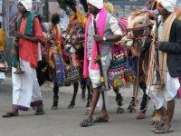 Hint siyasetçi 'İneklerin sütünde altın var' dedi, vatandaşlar inekleriyle kredi almaya koştu