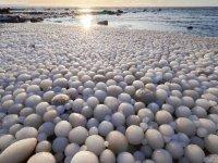 Finlandiya'da plaj, yumurta şeklinde buz toplarıyla kaplandı