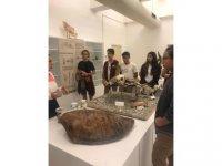 Yakın Doğu Koleji öğrencileri Kıbrıs Herbaryum ve Doğa Tarihi Müzesi'nde endemik bitki, böcek ve sürüngen örneklerini incelediler