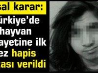 Türkiye'de hayvan cinayetine ilk kez hapis cezası verildi