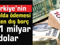 Türkiye'nin bir yılda ödemesi gereken dış borç 121 milyar dolar