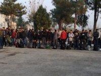 TIR dorsesinde 117 sığınmacı yakalandı