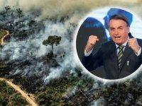 Brezilya'da Amazon'un talanı iki katına çıktı!