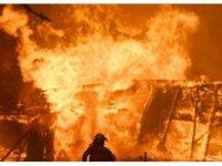 Avustralya'daki yangınlarda 11 milyon futbol sahası büyüklüğünde alan kül oldu