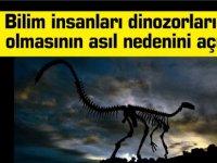 Bilim insanları dinozorların yok olmasının asıl nedenini açıkladı