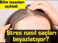 Bilim insanları açıkladı: Stres nasıl saçları beyazlatıyor?