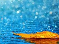 En Çok Yağış Beyarmudu Bölgesine Düştü