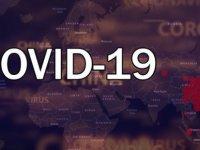 Dünyada Kovid-19 Bulaşan Kişi Sayısı 83 Bini Geçti