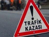 Lefkoşa'da kaza! Direğe çarptı