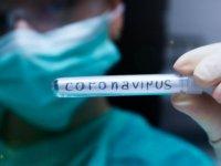 Hollandalı aile hekimleri: Koronavirüs yüzünden ölen çok sayıda kişi test edilmeden gömülüyor