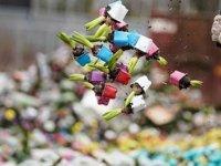 Koronavirüs Hollanda Lalelerini De Vurdu: Çiçeklerin Yüzde 70'i İmha Edildi