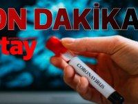 Türkiye'de Kızılay:Koronavirüs'ü yenenleri 14 gün sonra kan merkezlerine çağırdı