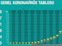 Türkiye'de Koronavirüs nedeniyle hayatını kaybedenlerin sayısı 131'e; vaka sayısı 9 bin 217'ye yükseldi!