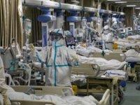 Avusturya'da koronavirüs hastasına akciğer nakli