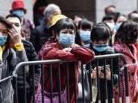 Çin'deki gazeteciler: Hükûmet, Koronavirüs hakkındaki gerçek verileri gizliyor