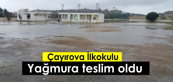 cayirova-n.png