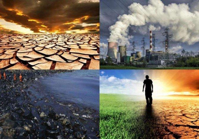ekolojik.jpg