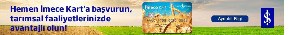 isbank-003.jpg