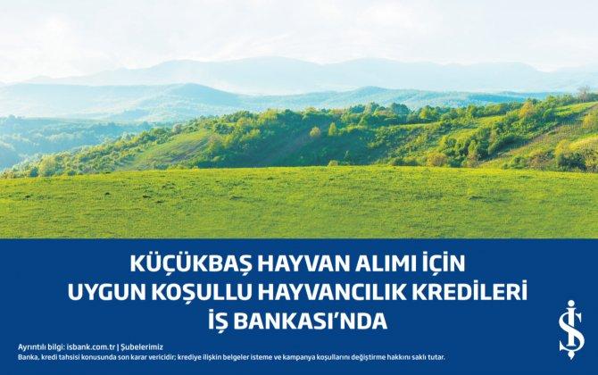 isbank_nisan.png