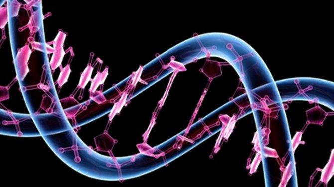 kanserde-mutasyona-gore-ilac-veriyoruz,vvruisxhr0ieadwdqxasig.jpg