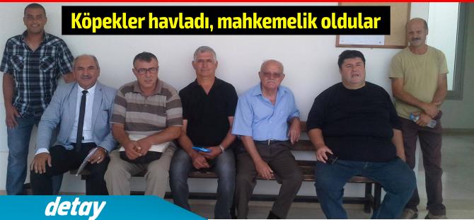 kopekler_mahkeme.png