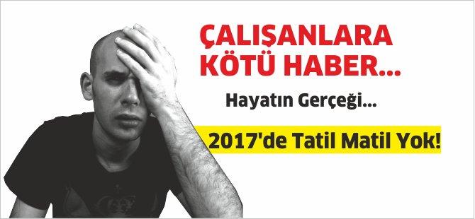 kot-haber.png