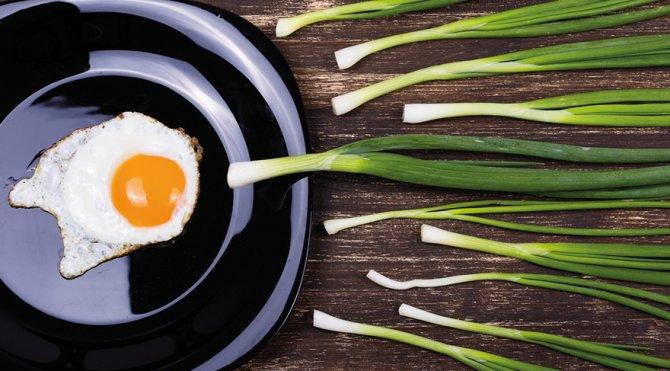 yumurta-sperm.jpg