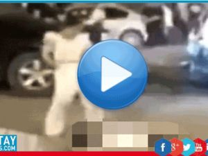 Arabasıyla çarptı, yetmedi bir de ölüsünün etrafında dans etti!