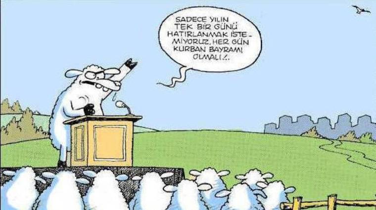 en-komik-kurban-bayrami-karikaturleri-kurban-bayrami-karikatur-1390272_1151636392542fb022ed0ce