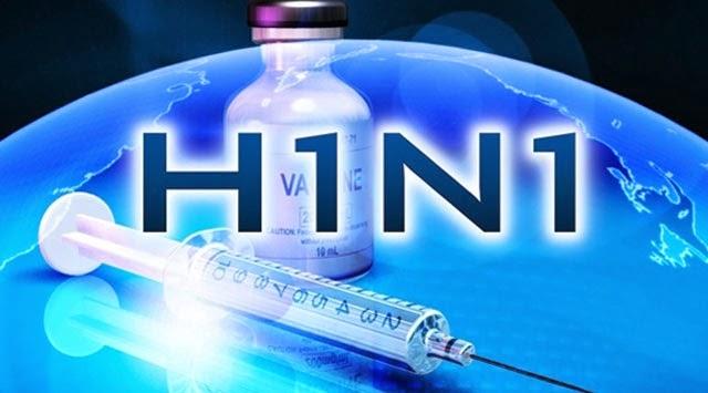 domuz gribi h1n1 virusu